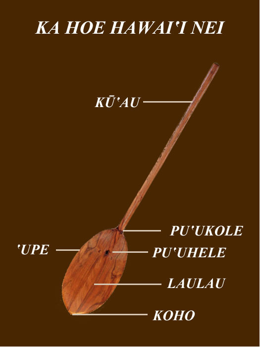 The-Hawaiian-Paddle